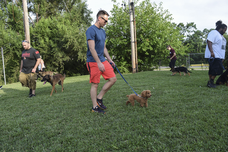 Dog Training Louisville